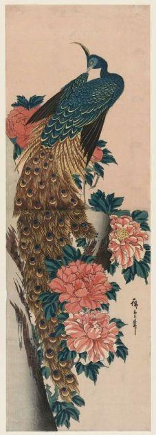 utagawa-hiroshige_peacock-and-peonies